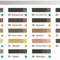 Colorwheel® Microblading Pigments
